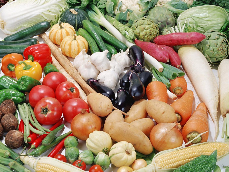 Картинки по запросу Как правильно собирать урожай и укладывать на хранение